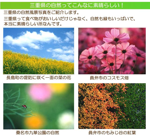 三重県の素晴らしい自然風景